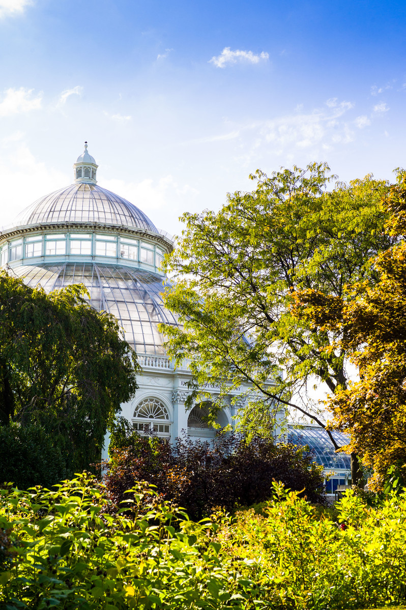 Mnr getaways - New york botanical garden directions ...